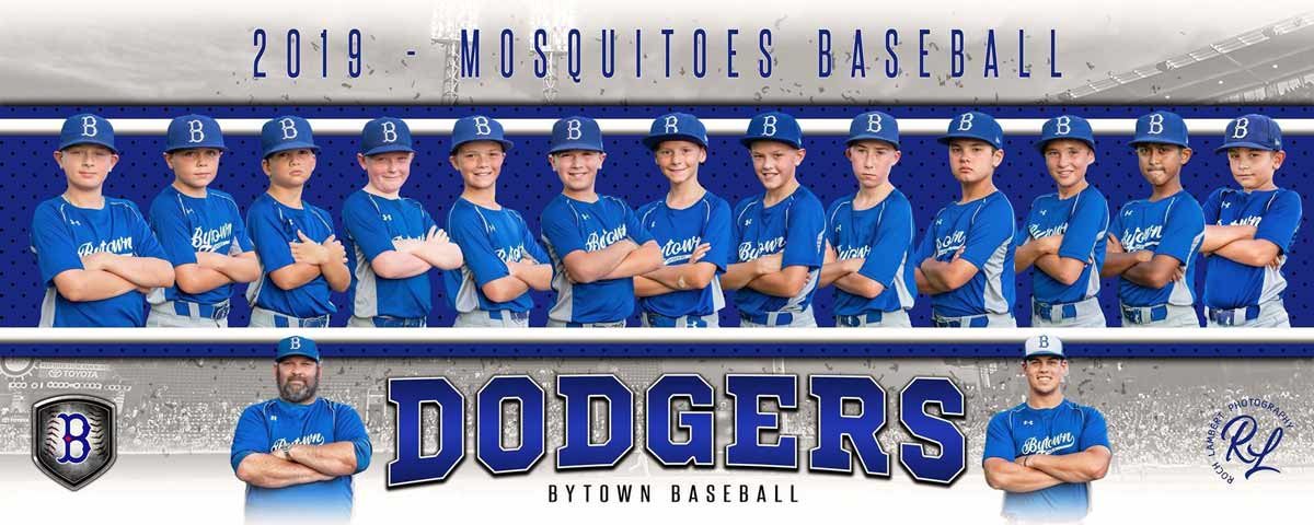 2019-Bytown-Mosquitos